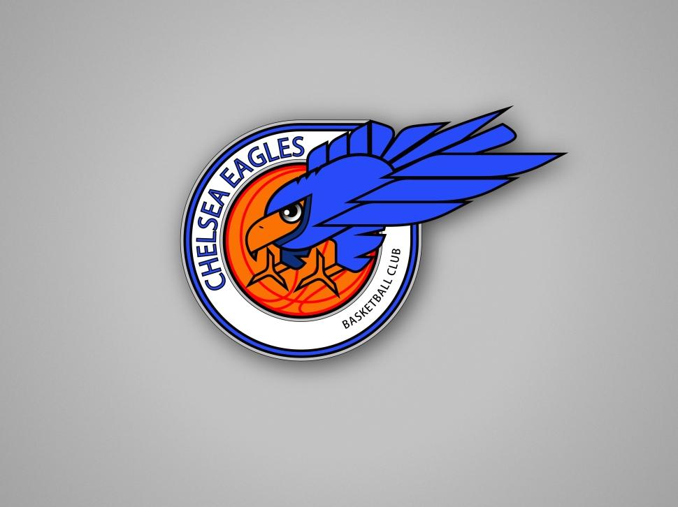 Chelsea Eagles BC Wallpapper grey