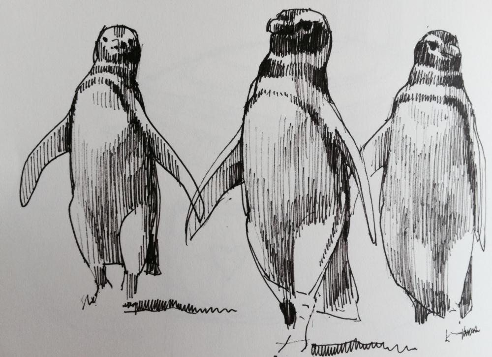 Reservoir penguins