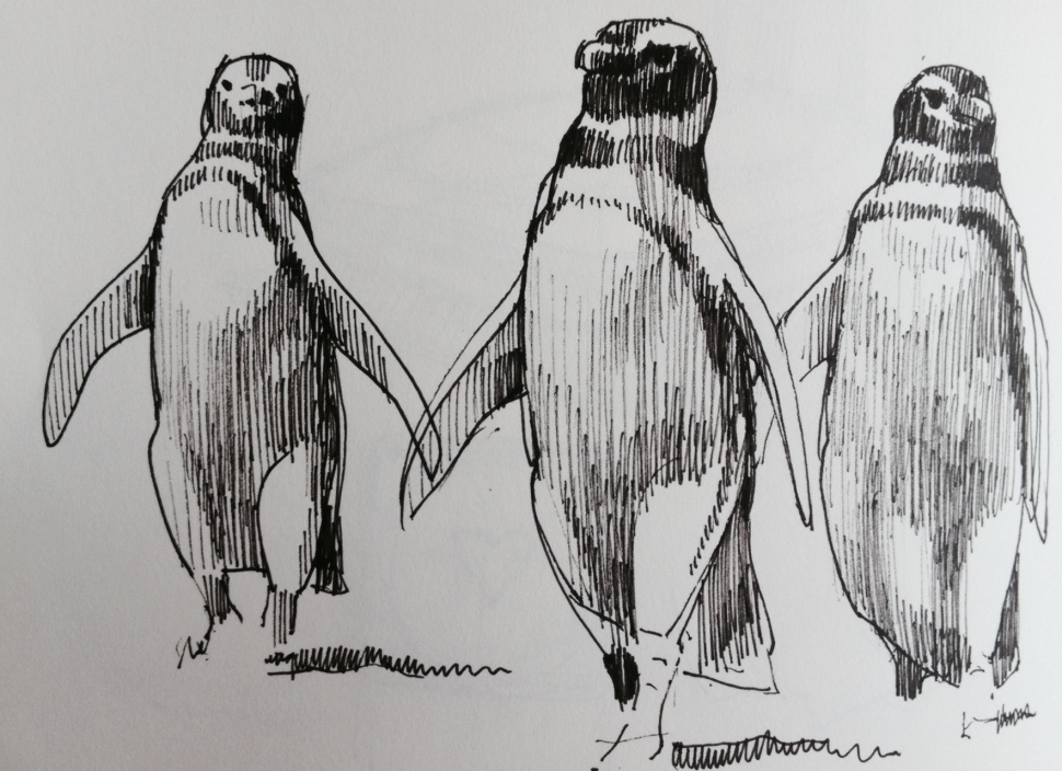 Reservoir penguins